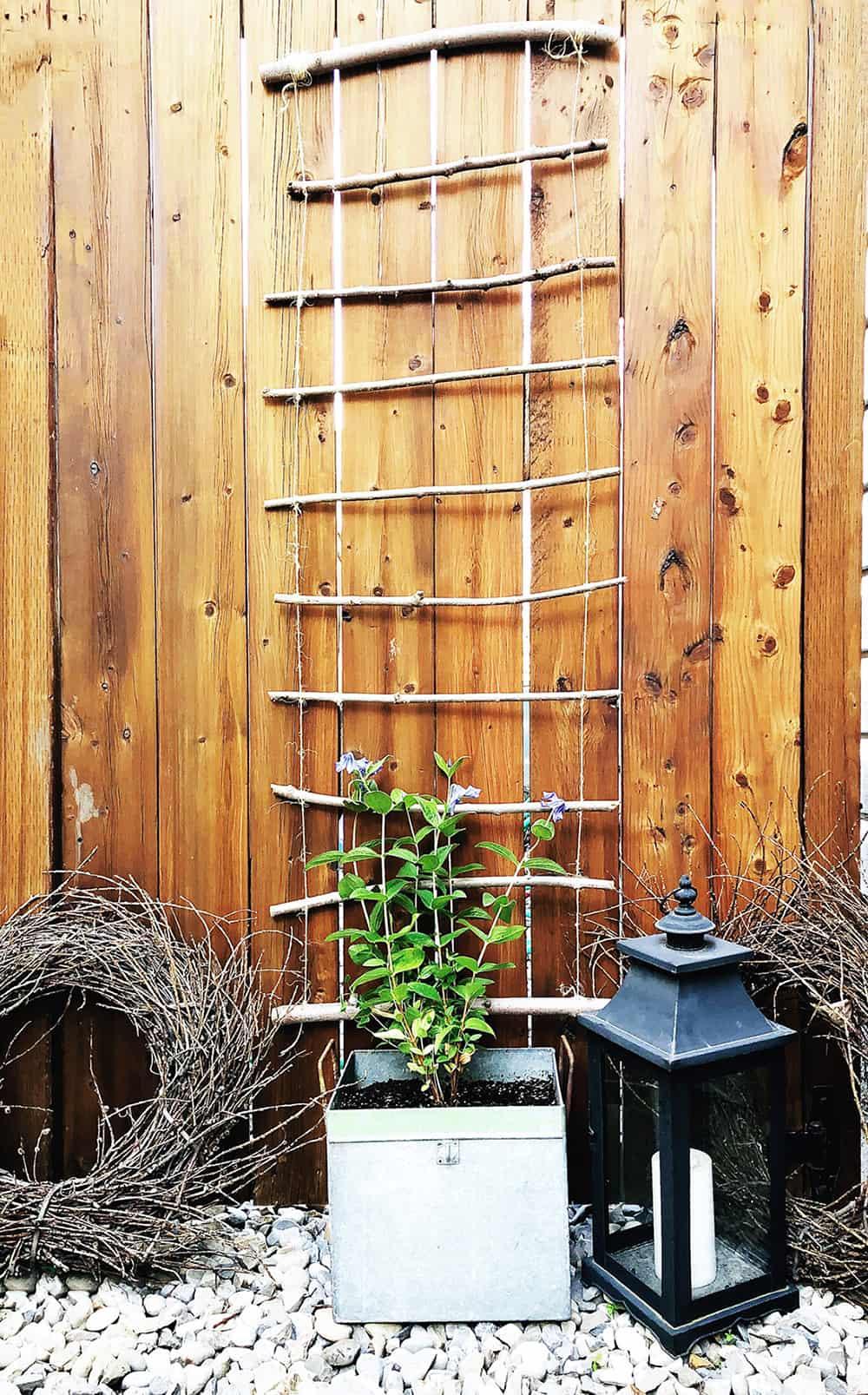 Fabriquer Treillis Bois Pour Plantes Grimpantes didacticiels de bricolage treillis pour votre jardin