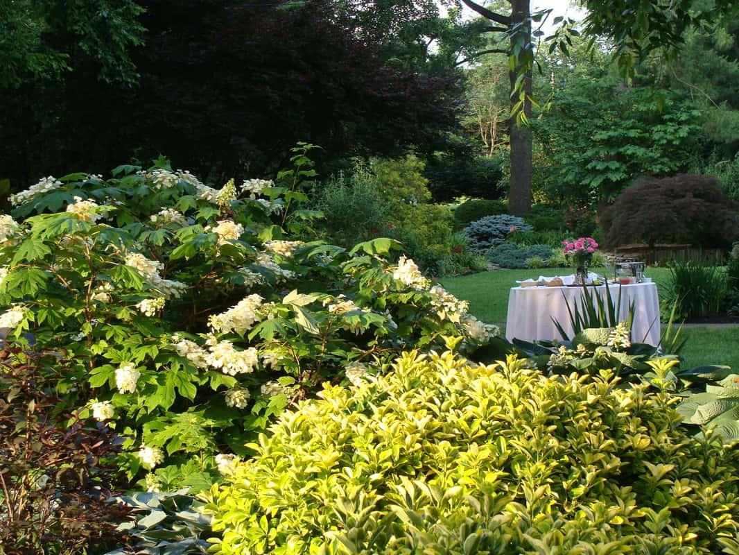 Les jardins de Ray Eden