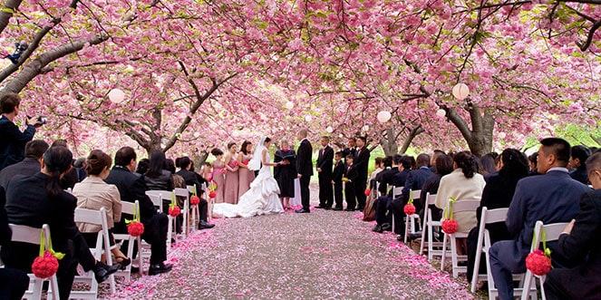 Mariage au jardin botanique de Brooklyn