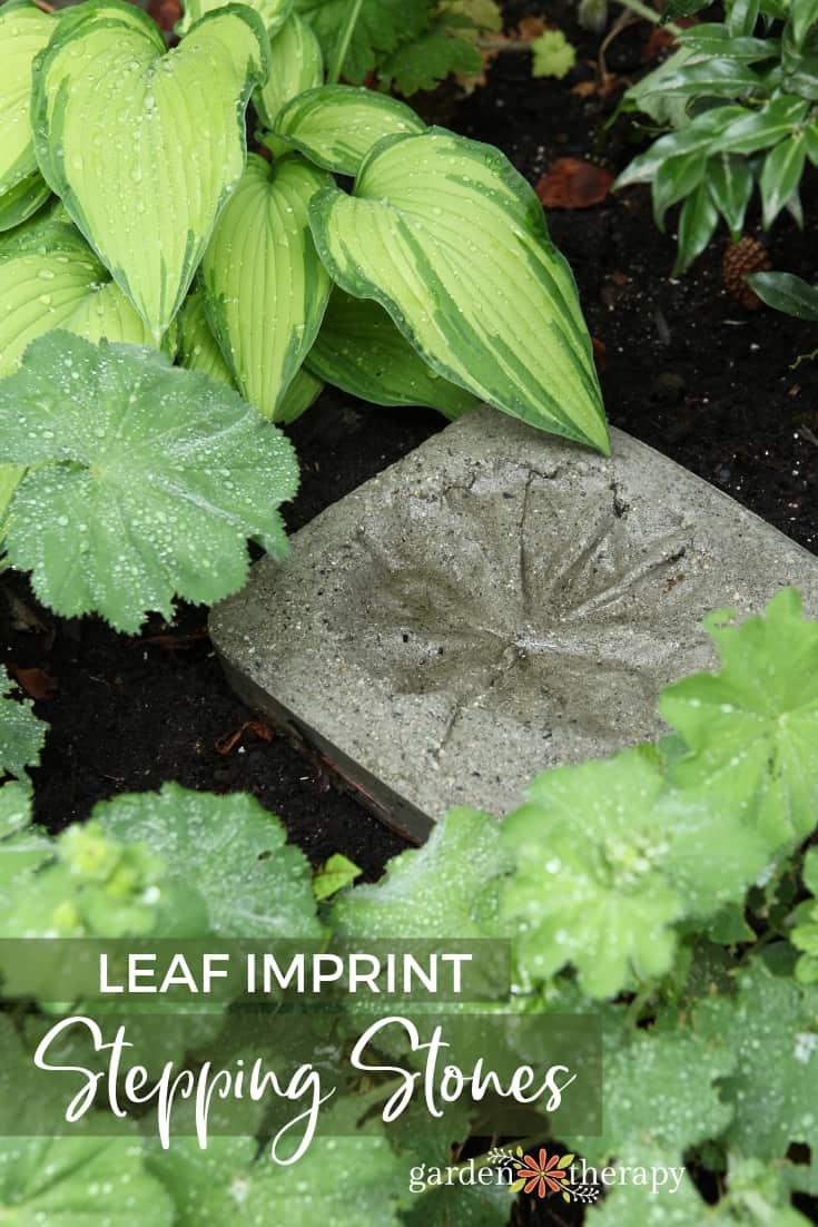 Feuilles d'impression de feuilles