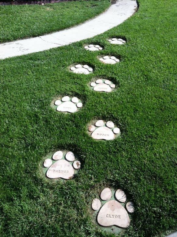 """Pas de chien et patte de chien """"width ="""" 581 """"height ="""" 778 """"srcset ="""" https://cdn.diys.com/wp-content/uploads/2019/11/Dog-paw-and-pet-name -stepping-stones.jpg 581w, https://cdn.diys.com/wp-content/uploads/2019/11/Dog-paw-and-pet-name-stepping-stones-224x300.jpg 224w """"tailles ="""" (largeur maximale: 581px) 100vw, 581px"""