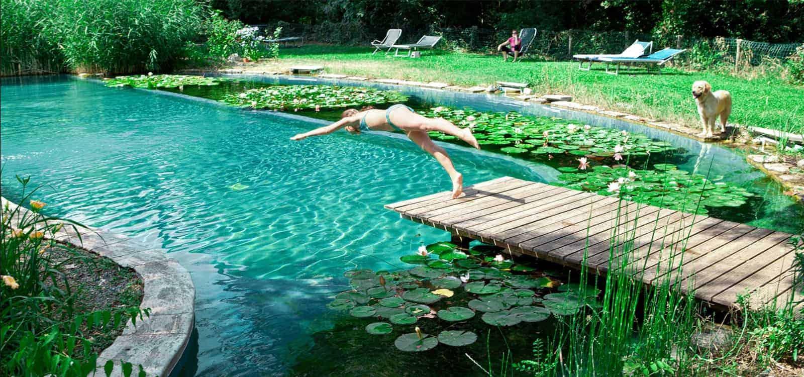 Voir Piscine Hors Sol comment installer vos propres piscines creusées et hors sol