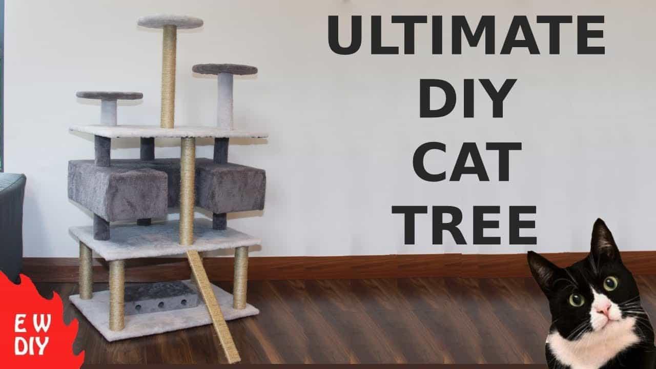 L'arbre à chat ultime