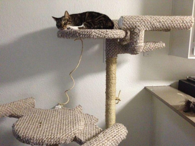 Arbre à chat à thème bricolage Star Treck