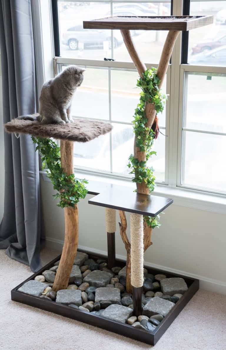 Arbre à chat jardin zen