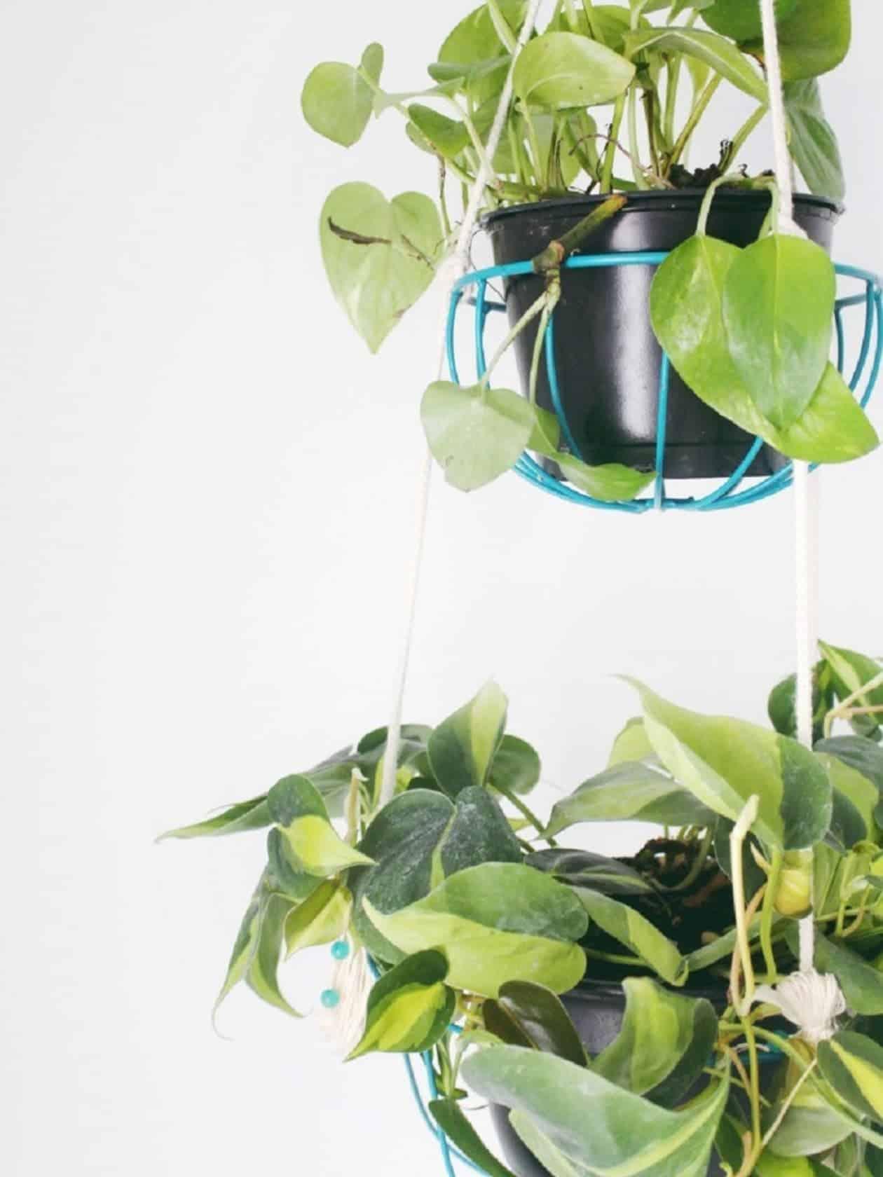 Panier de jardinière en bricolage