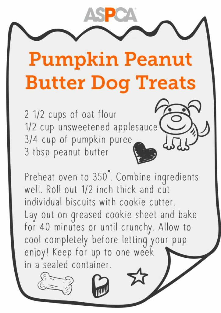 Friandise pour chien au beurre d'arachide