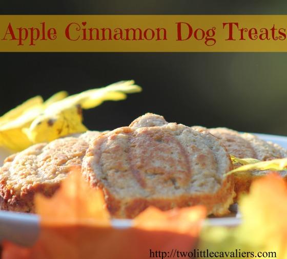 Friandises pour chiens à la cannelle et aux pommes