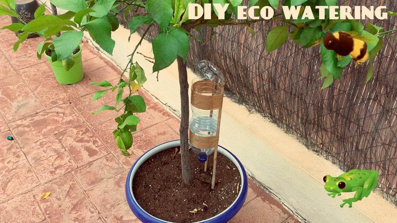 Système d'arrosage automatique pour les plantes et les arbres en pot