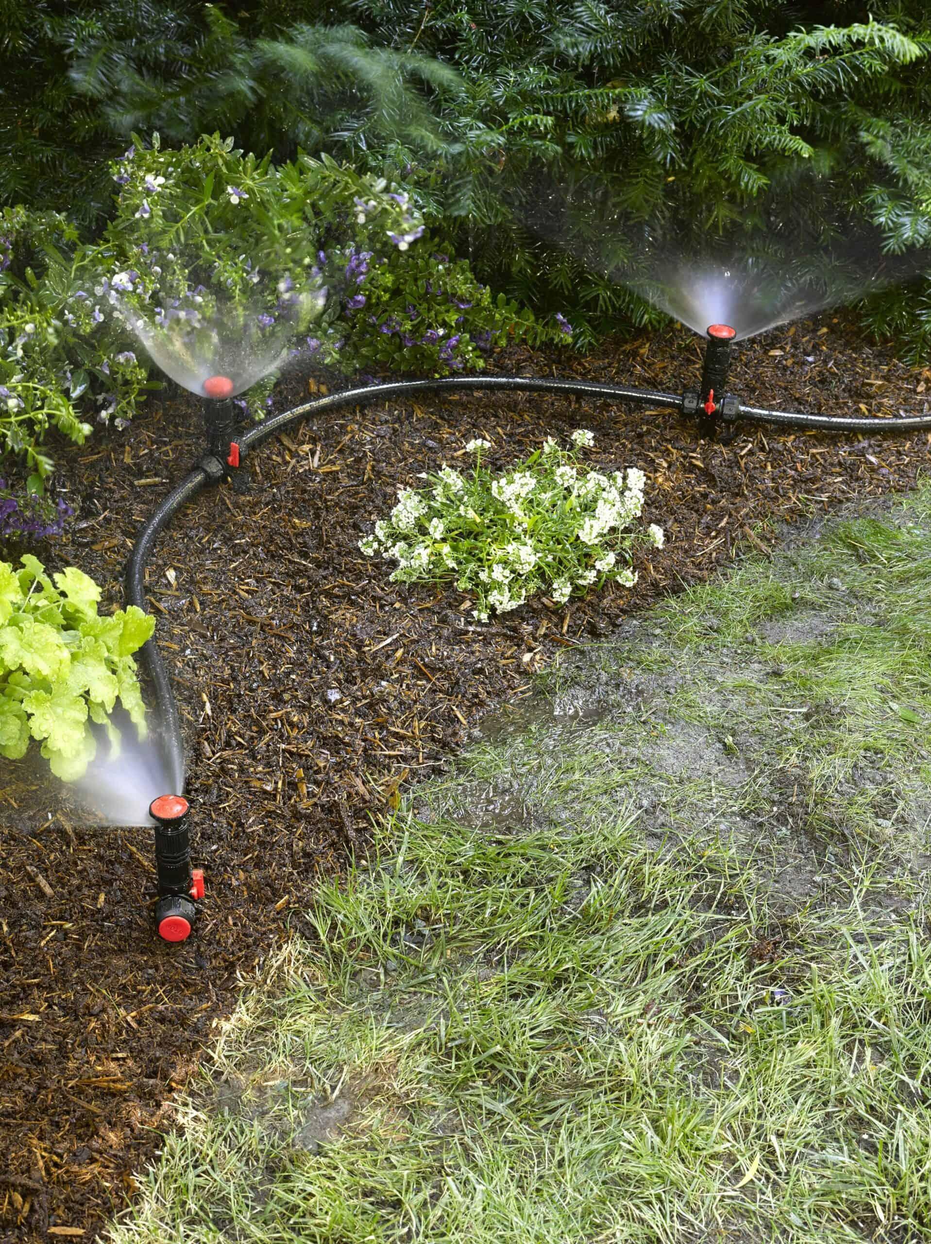 Systèmes d'irrigation hors sol pour l'aménagement paysager