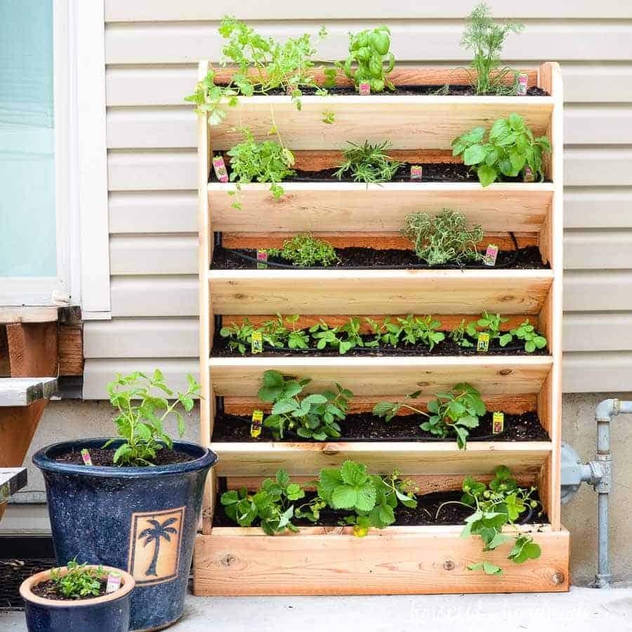 Jardin vertical bricolage avec système d'arrosage goutte à goutte