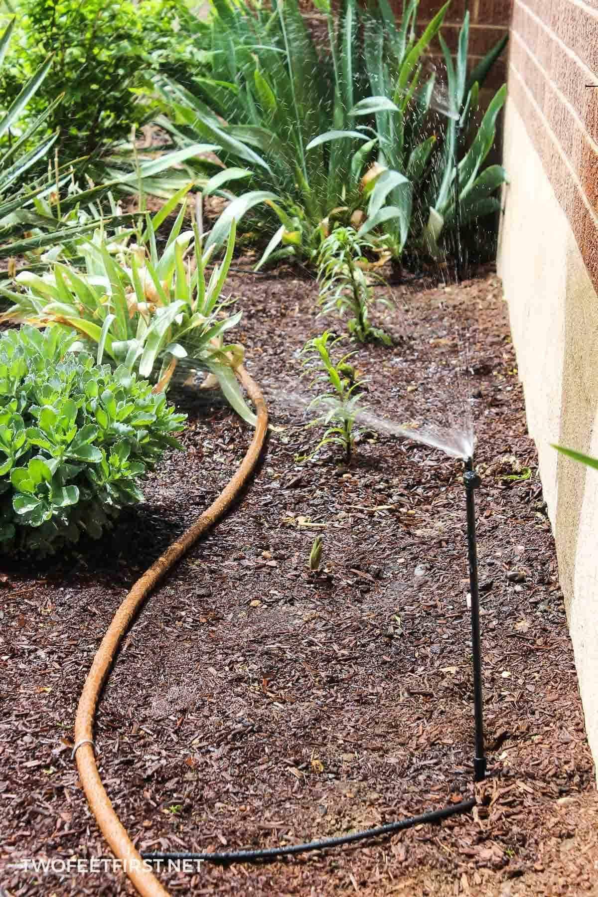 Système d'irrigation goutte à goutte bricolage