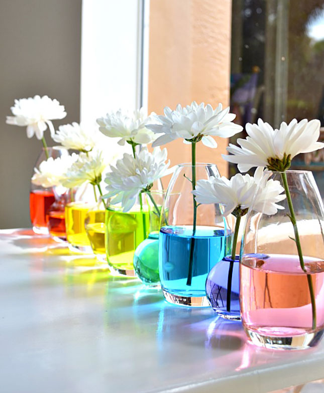 Vases à fleurs d'eau