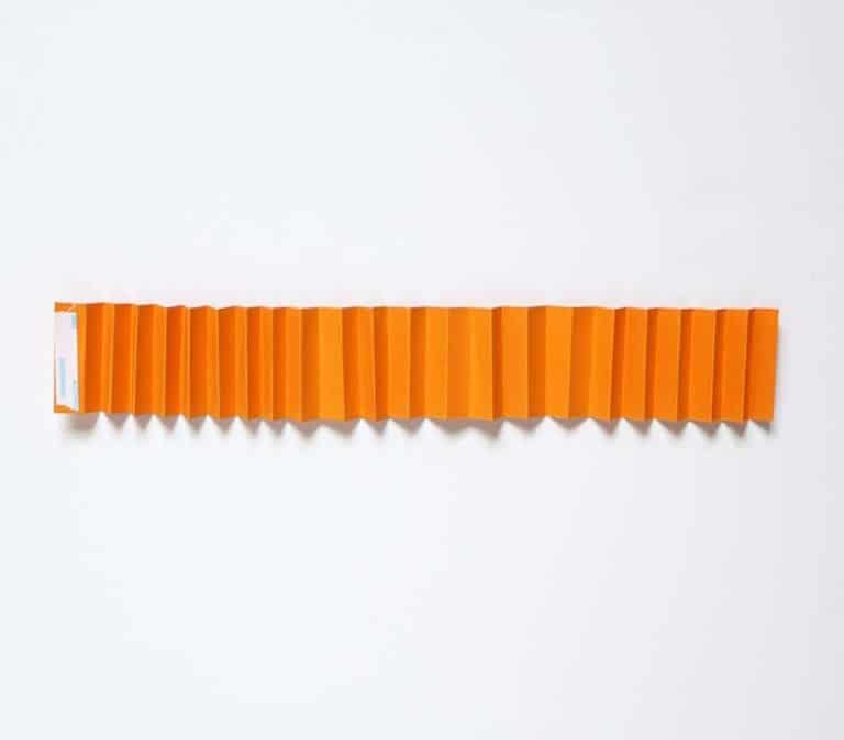 Guirlande de potiron Rosette DIY Peel The Liner
