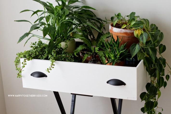 Support de plante Drawar