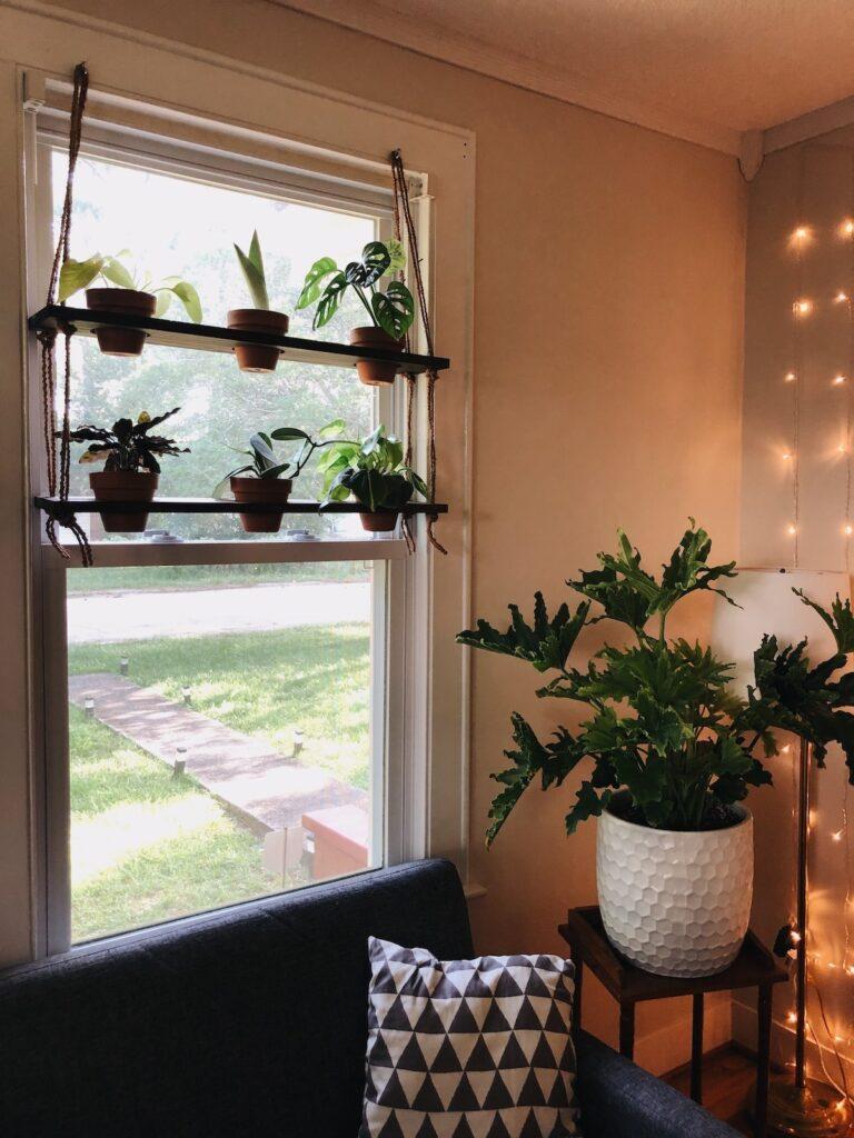 Étagère suspendue pour plantes