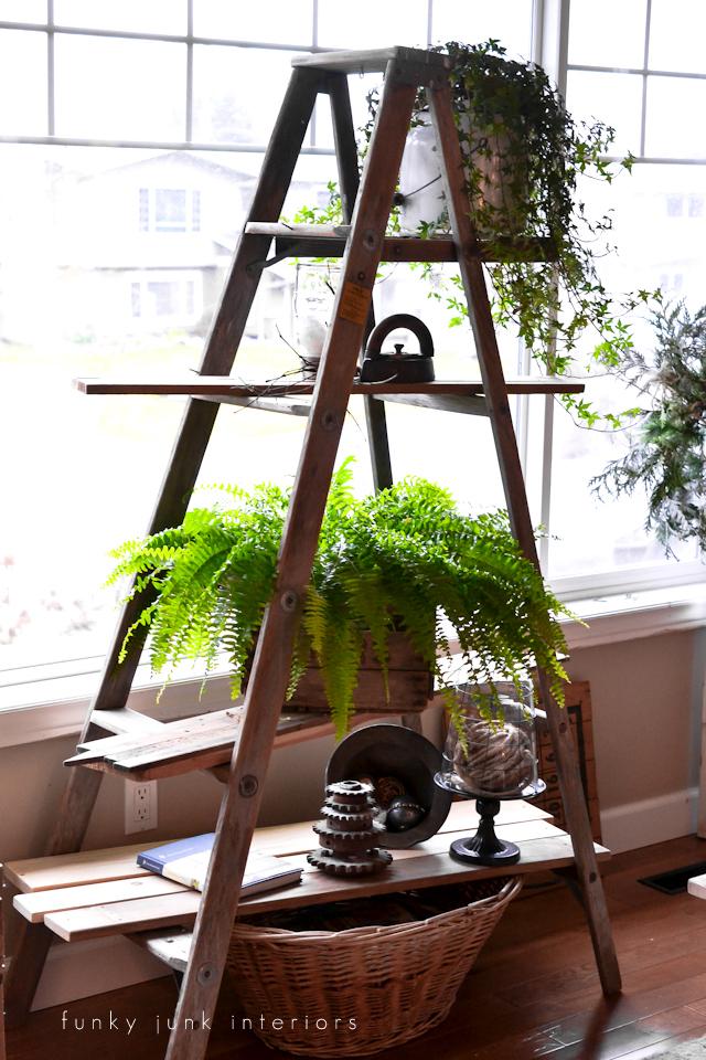 Support de plante d'échelle de bricolage