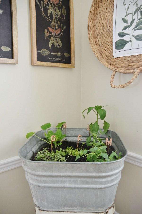 Support de plante DIY Wash Tud