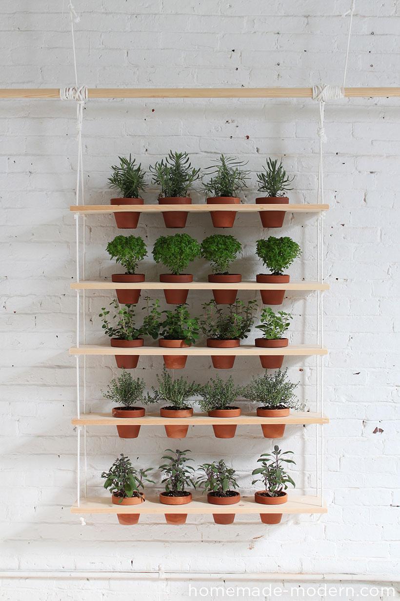 Bricolage plante Stabd
