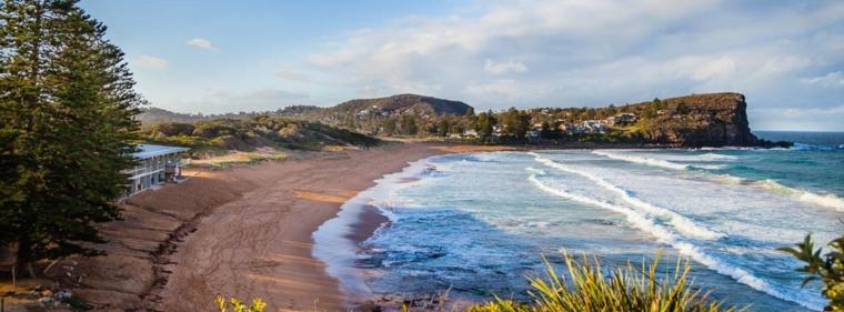 plages à Avalon Beach