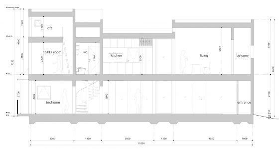 Plan coupé maison étroite de 5 x 15 mètres
