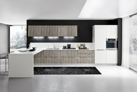 Conception de cuisine noir et blanc