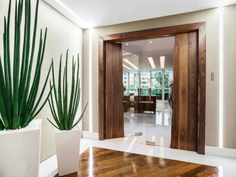 couloir hall d'entrée porte en bois