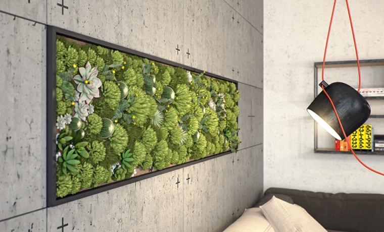 mur de jardin plantes succulentes
