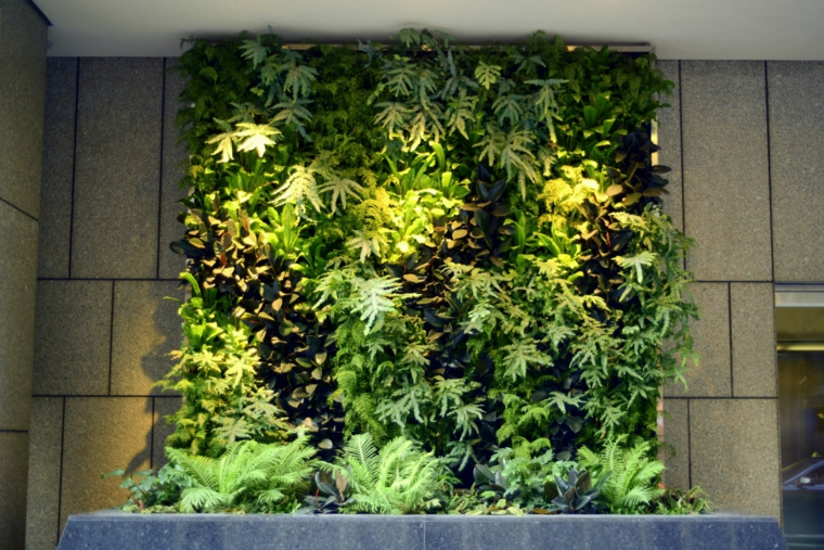 mur intérieur de jardin vertical
