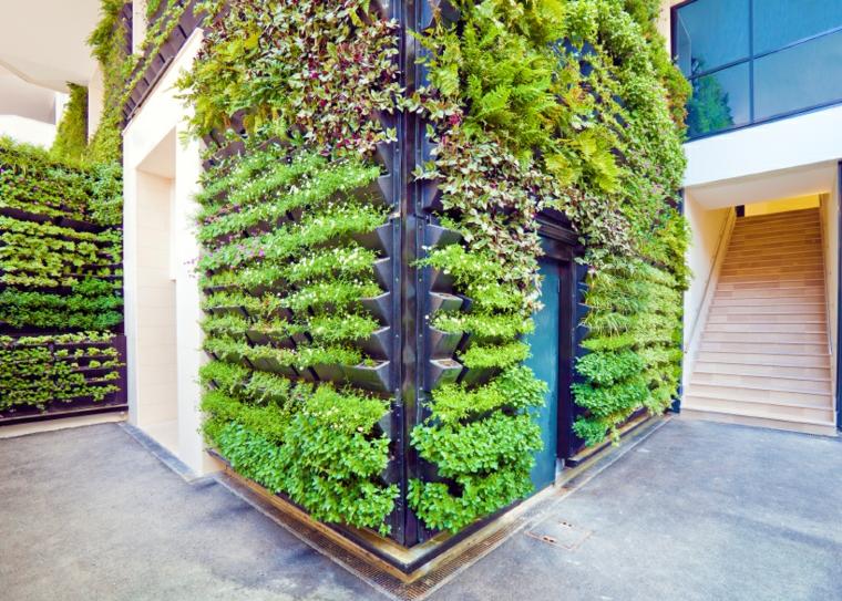 jardin vertical intérieur d'origine