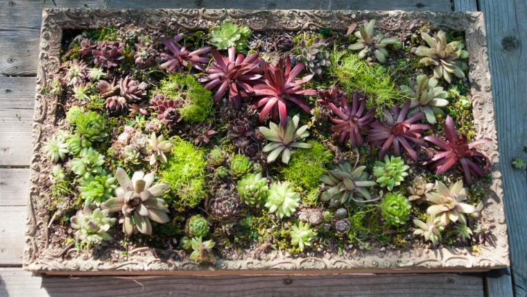 panneau décoré de plantes jolies couleurs