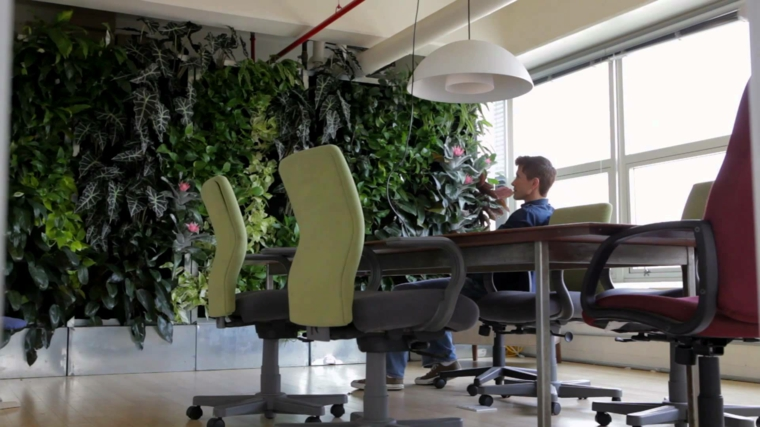 panneau de plantes d'intérieur déco de bureau