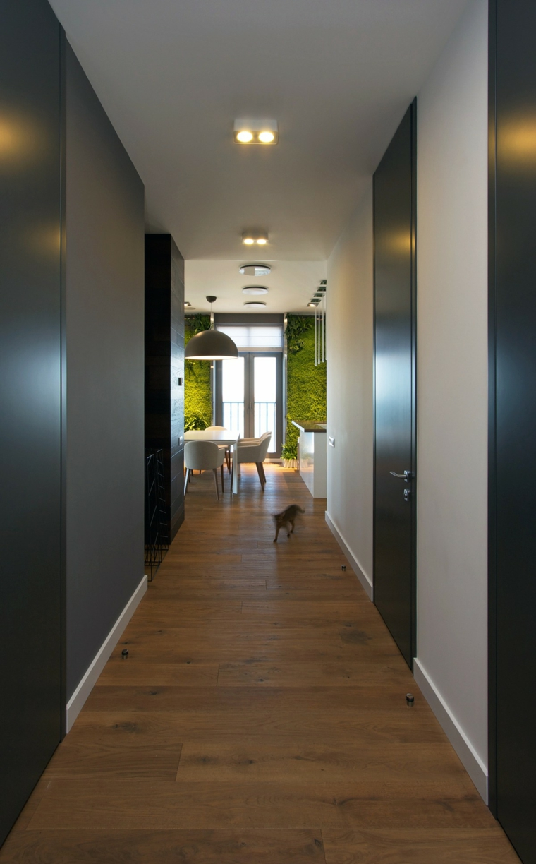couloir vue murs verts salon