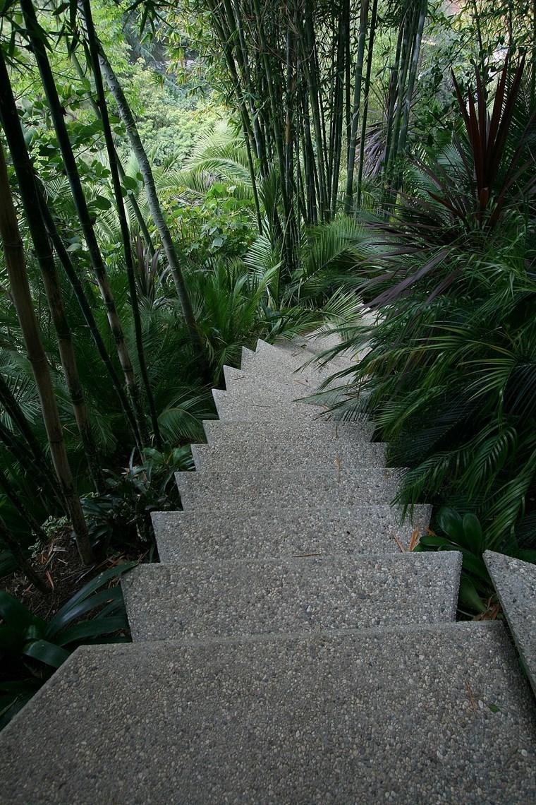 escaliers idées uniques de colline de maison