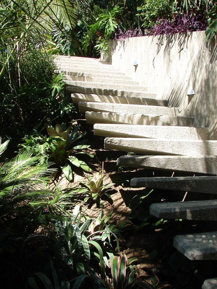 plantes escaliers maison colline idées
