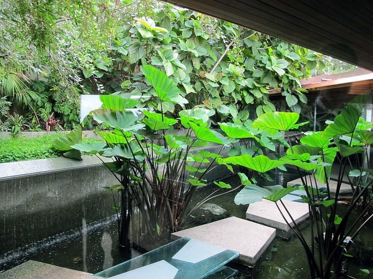 Idées de plantes de dalles d'étang de colline de résidence