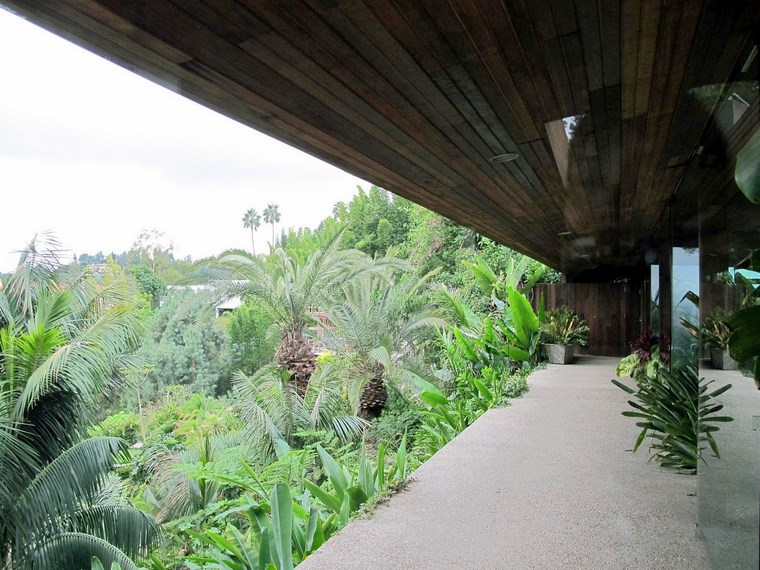 terrasse maison vues plantes idées de maison