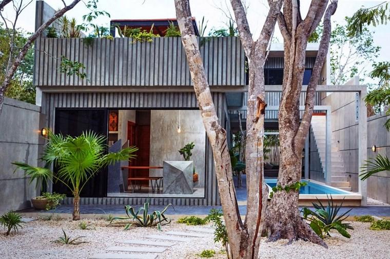 idées d'arbres de jardin mexique