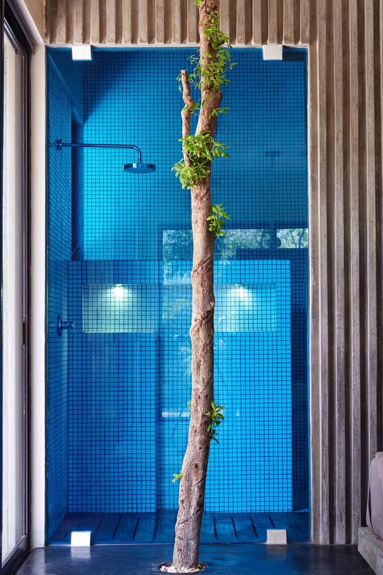 maison mexique design salle de bain idées d'arbre de douche