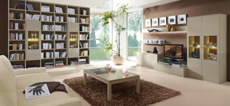 salon moderne grande bibliothèque idées livres