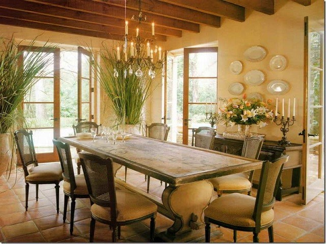 plantes chaises de salle à manger design chaleureux décoration plantes